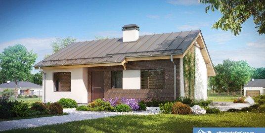 Proiect casa parter A10