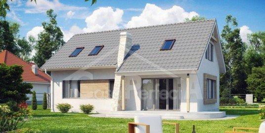 Proiect Casa A119