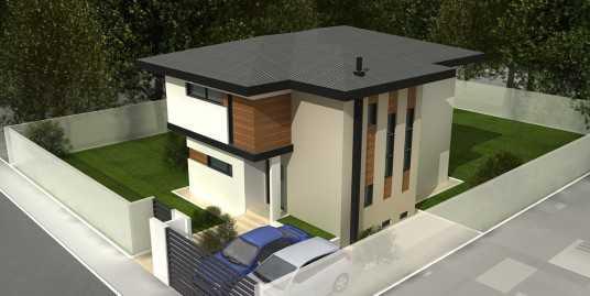 Proiect Casa A233